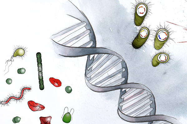 EMBO Practical Course: Microbial Metagenomics: A 360º Approach